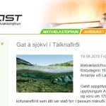 Rifið net í sjókví með 179.000 eldislöxum í Tálknafirði