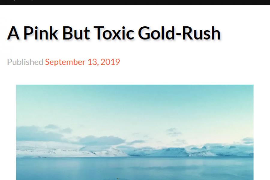 A Pink but Toxic Gold Rush – grein á ensku í The Reykjavík Grapevine um ógnirnar af sjókvíaeldi