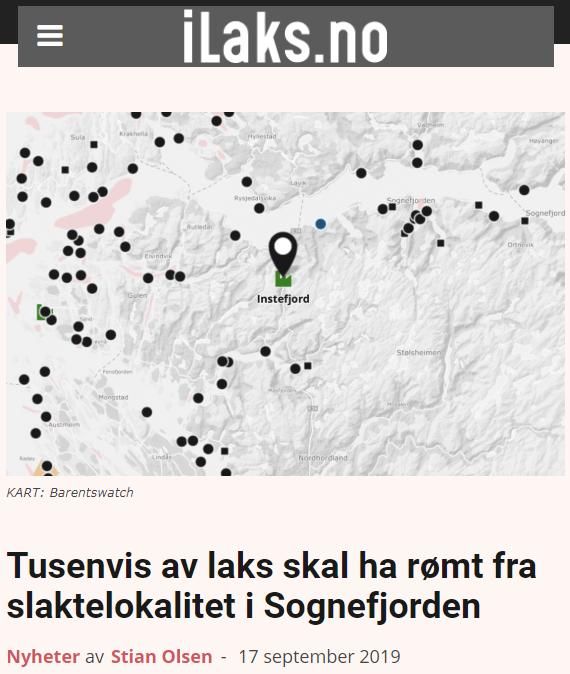 Risasleppislys í Noregi: 10.000 eldislaxar sluppu í Sognefjorden